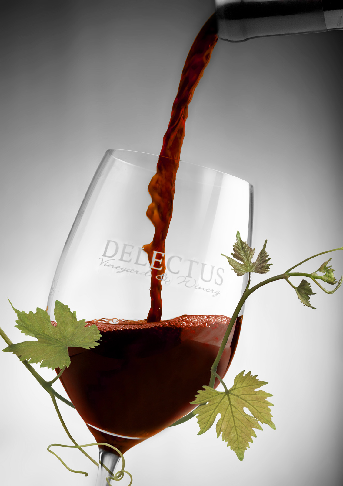 Delectus Winery Beauty Shot
