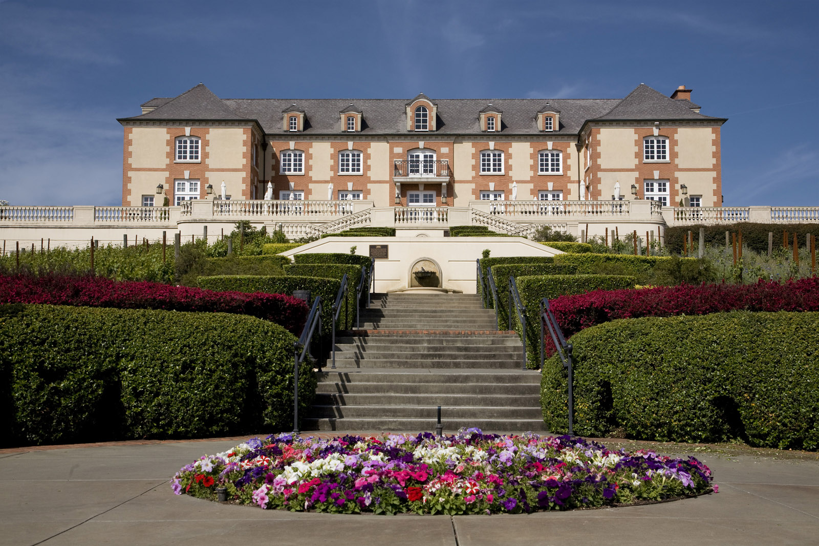 Domaine Carneros Winey, Napa Valley
