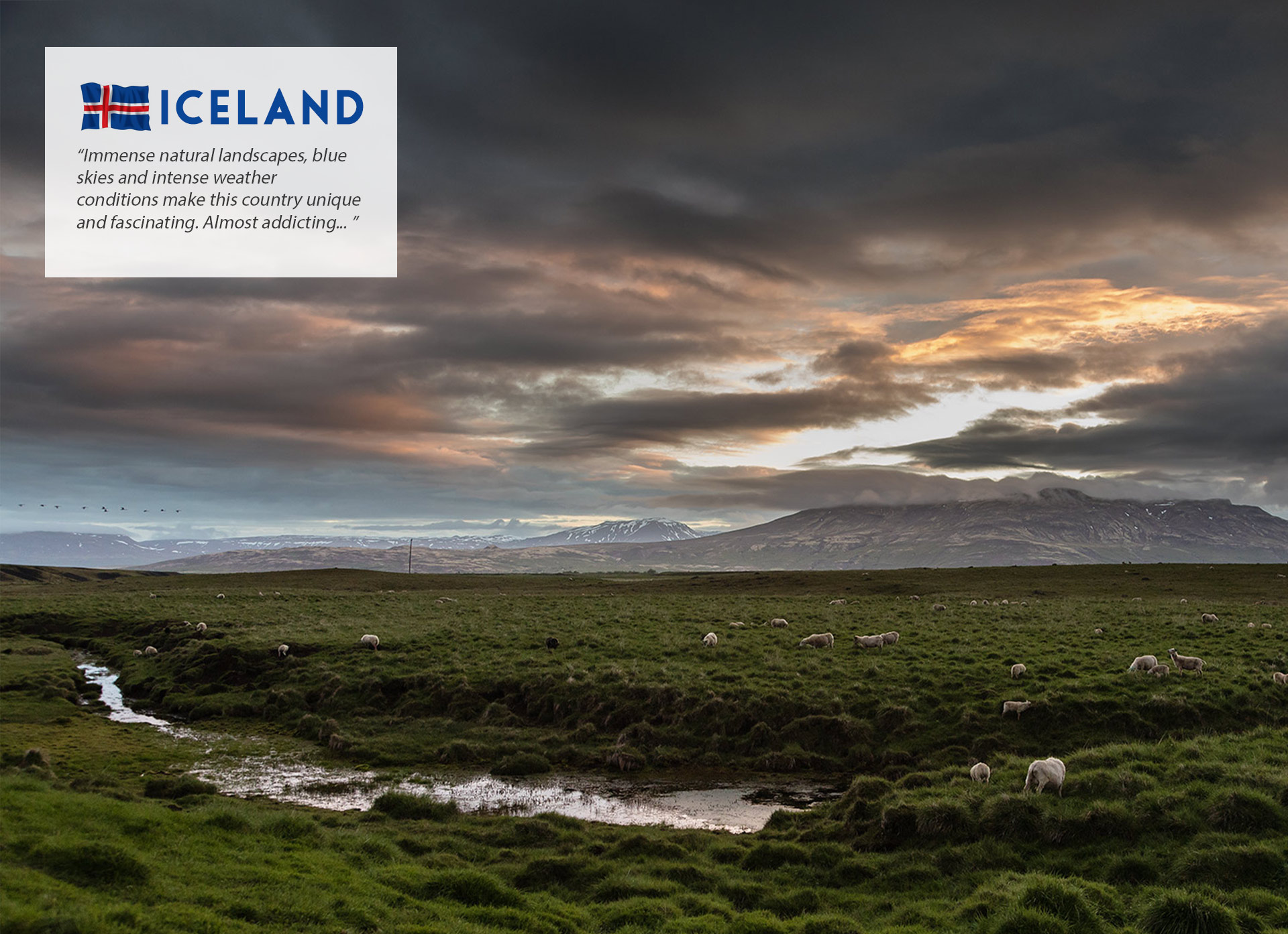 Iceland Intro Landscape | Travel Photographer Los Angeles
