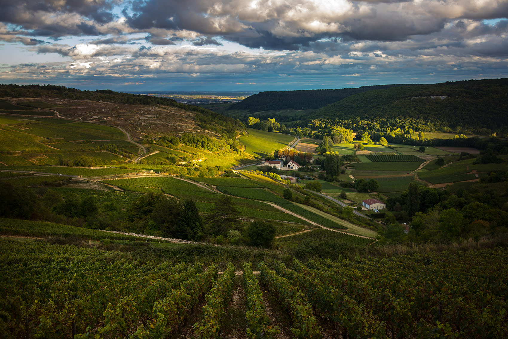 Bourgogne Landscape at Sunset