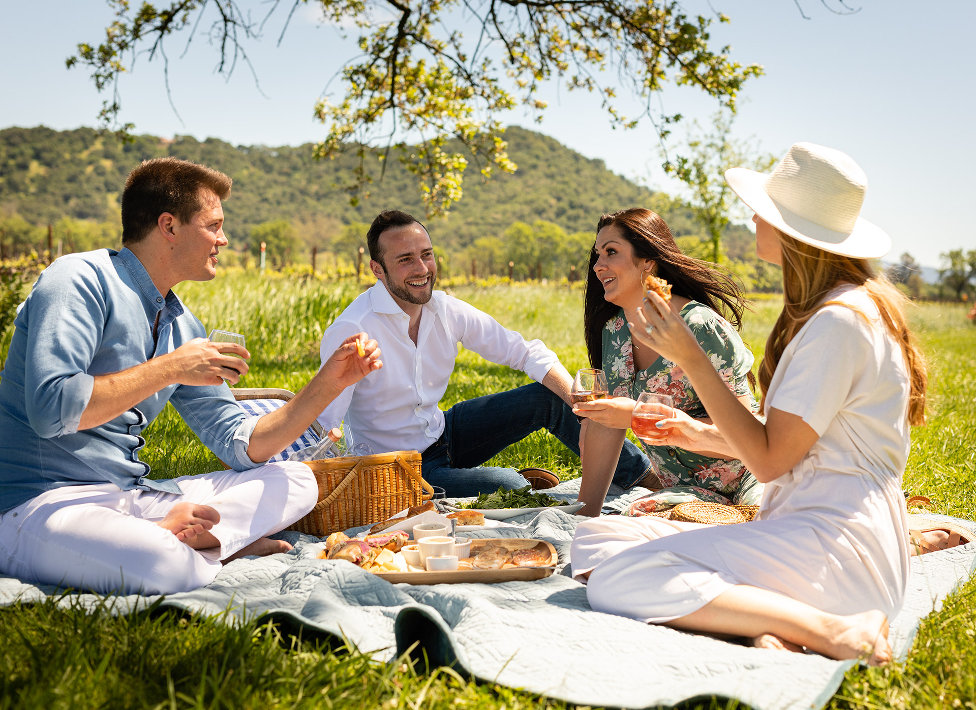 Napa Valley Picnic with Friends